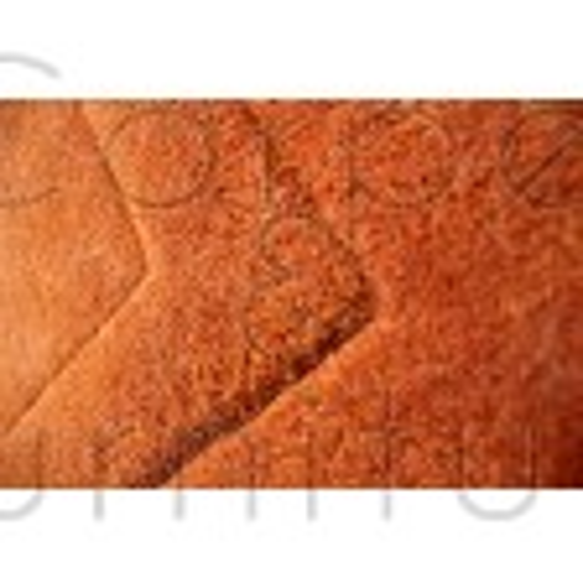 "Sierra Apollo Rug - Rust - Size 75 x 150 cm (2'6"" x 5')"