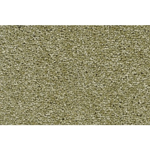 York Wilton Twist - Kale Carpet