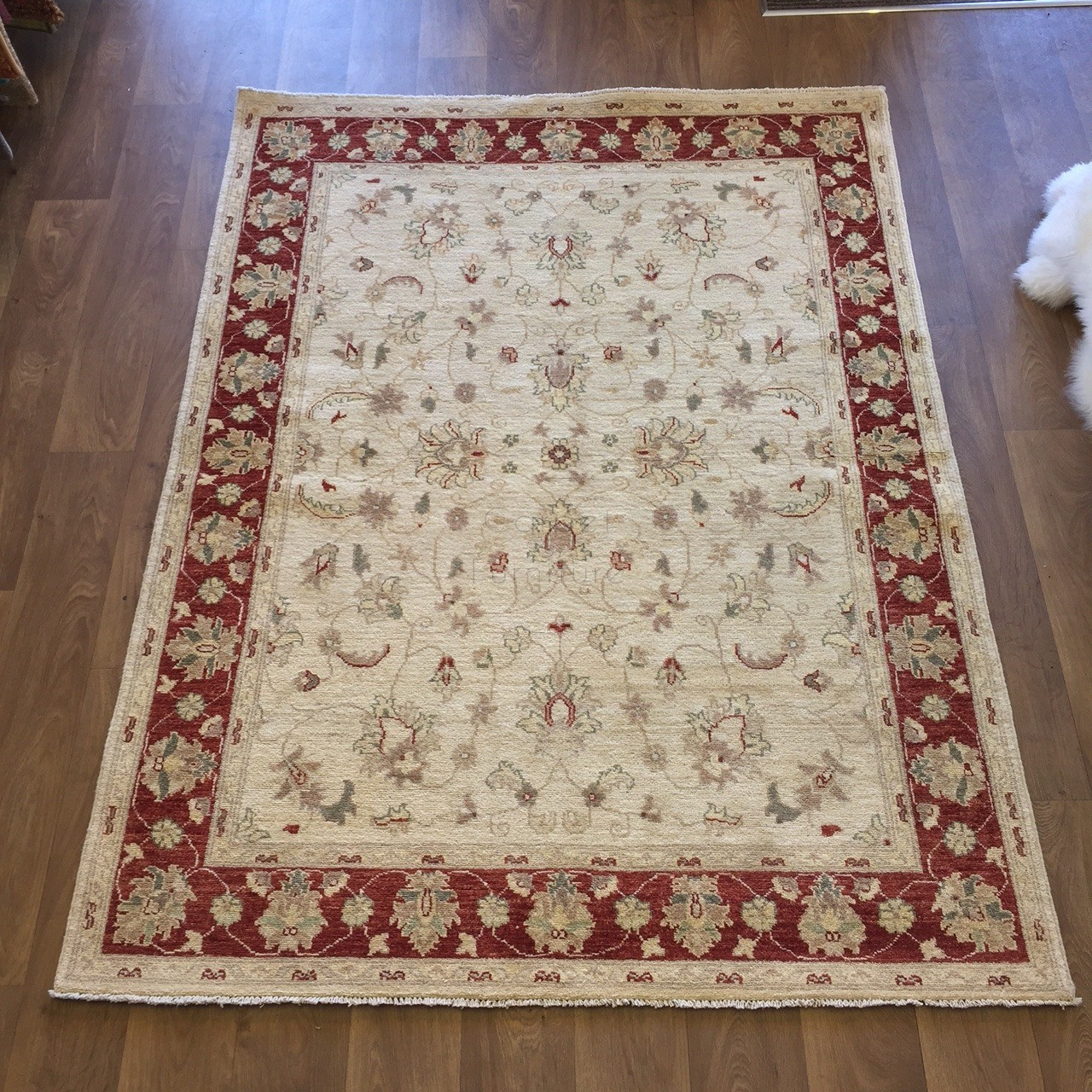 Afghan Ziegler Hand Knotted Traditional Wool Rug Cream Red 150 X 200 Cm