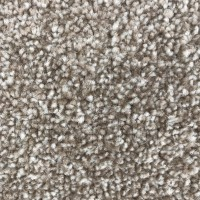 ROLL DEAL - Beige Heather Twist Carpet